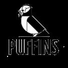PUFFINS (owoce suszone próżniowo)